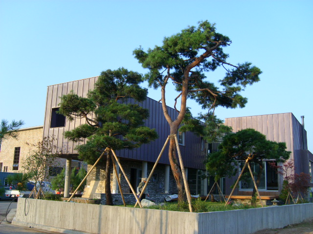교하단독택지공사(2008년).JPG