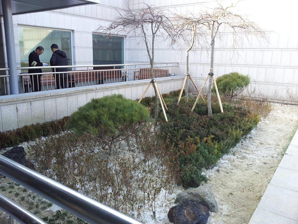 서울시립승화관옥상조경1.jpg